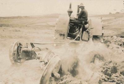 Tung Oil Plantation; 17-19