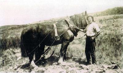 Alexander Stewart.; 16-330