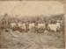 Local Settlers behind Hakaru Hall; 18-200