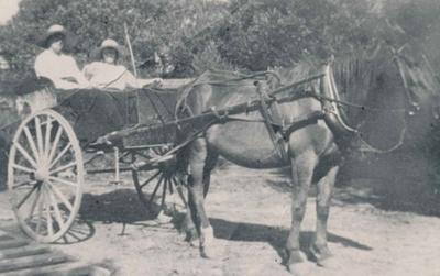 Wharfe Sisters; 20-132