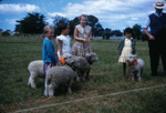 Mangawhai School Calf Club Day; 18-59