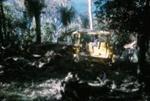 Bulldozer on Bream Tail Farm; 18-84