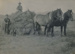 Haymaking at the Wharfe's Farm; 16-132
