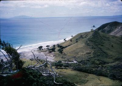 Beach from Bream Tail Farm; 18-167
