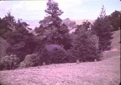 Hannah's Hill; 18-133