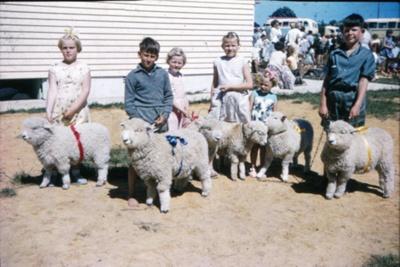 Mangawhai Beach School Calf Club Day; 18-72