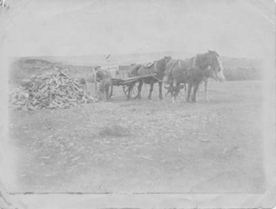 Wharfes on Breamtail Farm.; 16-185