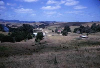 Bream Tail Farm; 18-129
