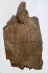 Kauri Timber Slab; 443