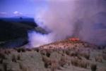 Burning Rushes on Bream Tail Farm; 18-106