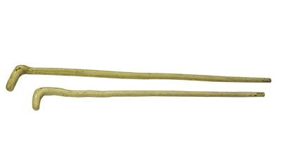 Walking Sticks; 16-67