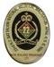 Badge; 16-219