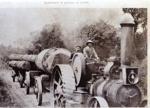 Hauling logs from Penmans Bush; 16-68