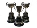Trophy x3;  120
