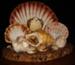 Shells, 2.82.1020