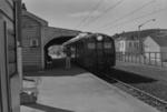 Photograph electric unit at Johnsonville station; Les Downey; 1976; 14-2771