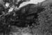 Photograph of locomotive J 1236; Les Downey; 1972-1976; 14-1522
