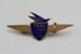 Badge [Teal Junior Jet Club]; Tasman Empire Airways Limited (New Zealand, estab. 1940, closed 1965); 2003.146.2