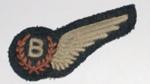 Bomb Aimer's Badge [RNZAF]; 2003.874