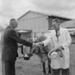 Auckland Show, 1959; Ron Vine; 1959; 10/012/008