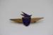 Badge [Teal Junior Jet Club]; Tasman Empire Airways Limited (New Zealand, estab. 1940, closed 1965); 2003.122.4