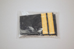 Epaulettes [Airline Uniform]; 2013.405