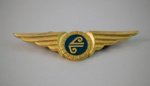 Badge [Air New Zealand]; Air New Zealand Limited (New Zealand, estab. 1965); 2002.91