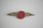Badge [Te Aroha Aero Club, Pilot]; Te Aroha Aero Club (New Zealand); Young and Company (New Zealand); 2003.531