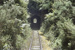 Photograph of Whangae tunnel; Les Downey; 1985?; 14-4581