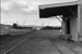 Photograph of goods shed, Taipuha station; Les Downey; 1972-1976; 14-1028