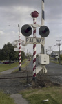 Photograph of level crossing signals; Les Downey; 1972-1976; 14-4084