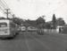 Buses on Sandringham Rd; Graham C. Stewart (b.1932); 08/092/116