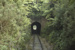Photograph of Whangae tunnel; Les Downey; 1985; 14-4297