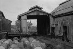 Photograph of abandoned Huntly mining area; Les Downey; 1972-1976; 14-3764