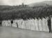 [Unidentified cricket team]; Unknown Photographer; Unknown; 14-0831