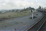 Photograph from excursion train, Wellsford; Les Downey; 1972-1976; 14-4197