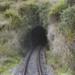 Photograph of Ahuroa tunnel; Les Downey; 1972-1976; 14-4204