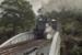 Photograph of joyride train, Glenbrook; Les Downey; 1985?; 14-4914