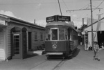 Photograph of Tram 253; Les Downey; 1972-1976; 14-1517