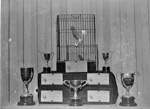 Caged bird competitions; Unidentified; 1933; 13-2167