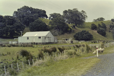 Photograph of rural scenery; Les Downey; 1985?; 14-4848