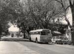 Auckland transport; Graham C. Stewart (b.1932); 08/092/222