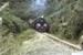 Photograph of locomotive J 1211 with excursion train; Les Downey; 1985?; 14-4662