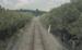 Photograph of rail line, Opua; Les Downey; 1972-1976; 14-4092