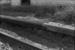 Photograph of station platform construction detail; Les Downey; 1972-1976; 14-1024