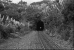 Photograph of tunnel near Swanson; Les Downey; 1972-1976; 14-2032