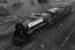 Photograph of locomotive K 900; Les Downey; 1972-1976; 14-1369