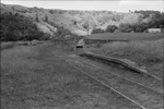 Photograph of stock loading area, Hoteo station; Les Downey; 1972-1976; 14-1008