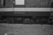 Photograph of railcar RM 100; Les Downey; 1972-1976; 14-3135