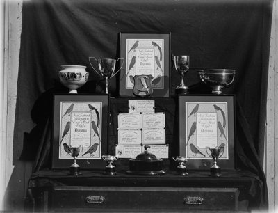A caged bird competition; Unidentified; 1934; 13-2025